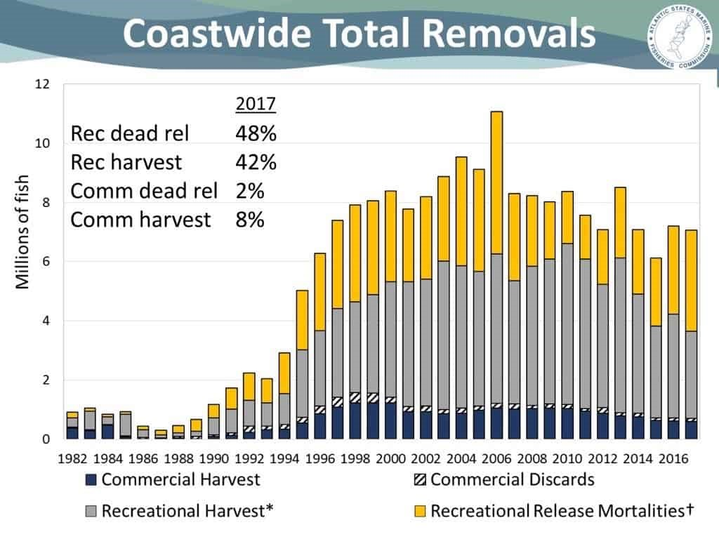 Catch and Release of Striped Bass Mortality vs Reality – American Saltwater  Guides Association