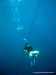 Practising my bubble rings, Monad Shoal, Philippines