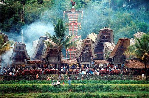 tana toraja houses
