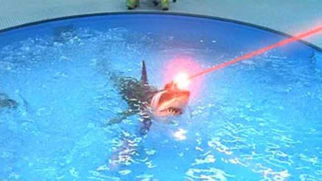 sharks-with-laser-beams