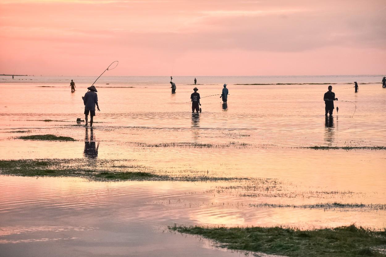 Tropical Fishing Group