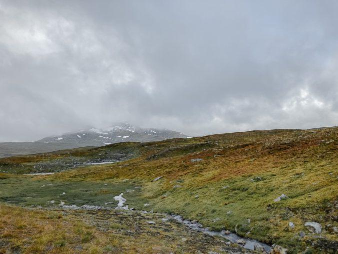 Der Vildmarksvägen - Echte Wildnis und unberührte Bergwelt