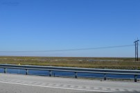 View from I-75