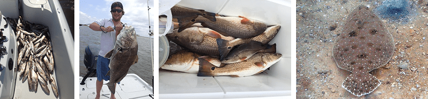 How to Choose the Best Louisiana Fishing Charter