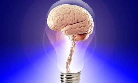 Un estudio confirma el vínculo entre el autismo y la conexión cerebro-intestino