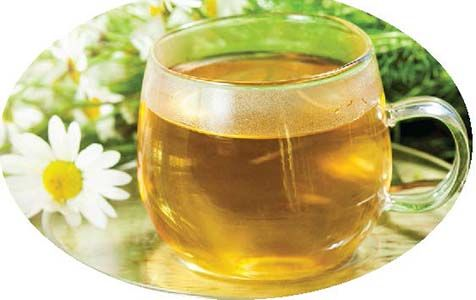 Medicinal properties of Chamomile