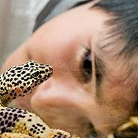 Take Care with Pet Reptiles and Amphibians