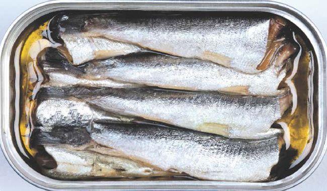 Nutricion Sardinas 650x380