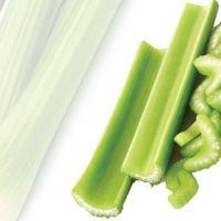Nutrición Propiedades y beneficios del Apio o Celeri