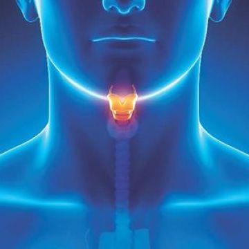Investigación, Qué es la Papilomatosis Respiratoria Recurrente