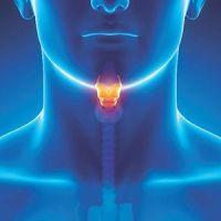 Qué es la Papilomatosis Respiratoria Recurrente