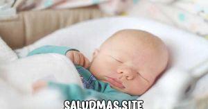 Cuanto Debe Dormir Un Bebe De 8 Meses
