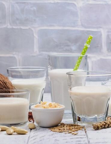 Sustitutos de la leche: Cuáles son los mejores y quién debería tomarlos