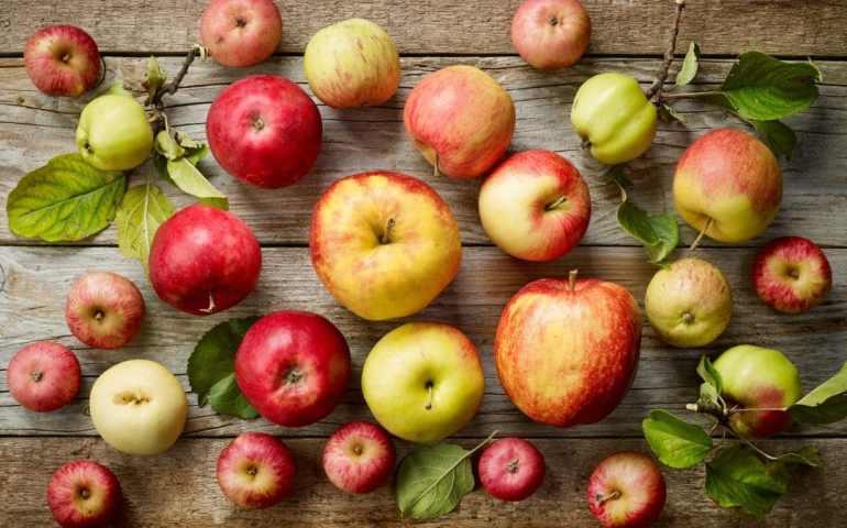 Razones por las que deberías empezar a comer una manzana al día