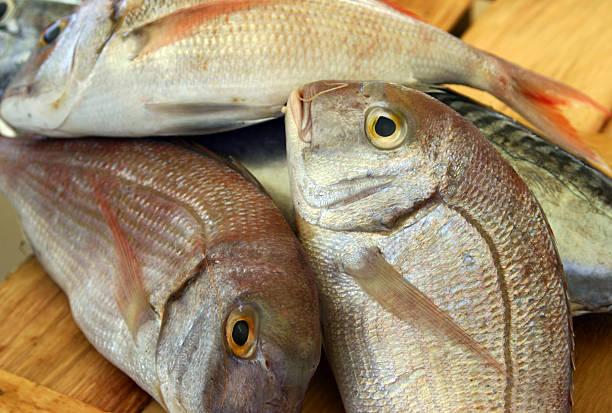 pescado con alto contenido en mercurio