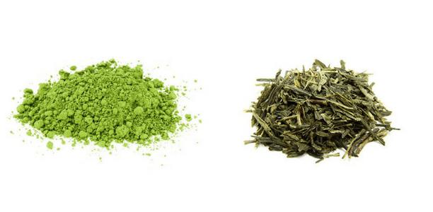 té matcha vs té verde