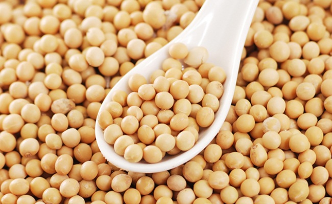 productos de soya