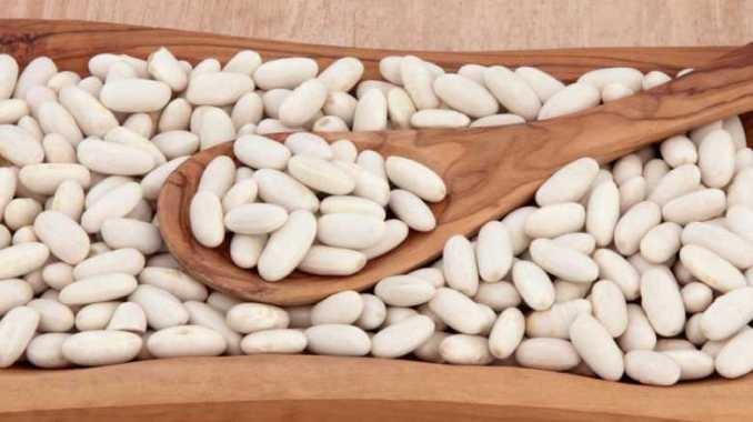 Perder peso con extracto de frijol blanco. Propiedades del Frijol Blanco (Poroto Blanco) Para qué sirve el poroto blanco Poroto Blanco para adelgazar