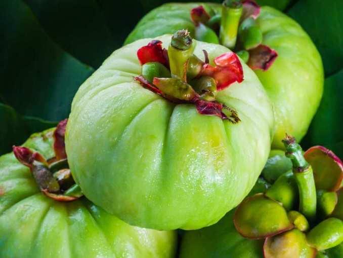 Beneficios de la Garcinia Cambogia