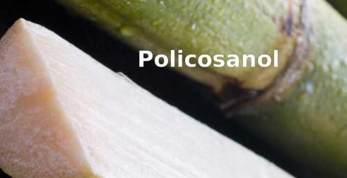 Beneficios y Propiedades del Policosanol