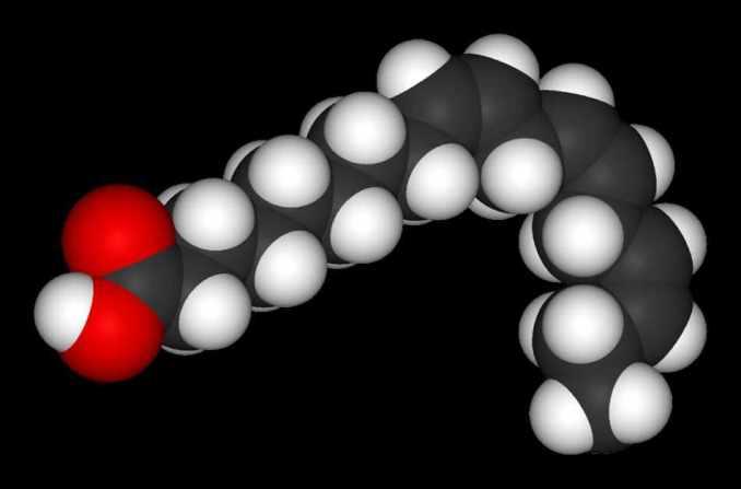 acido alfa-linolénico