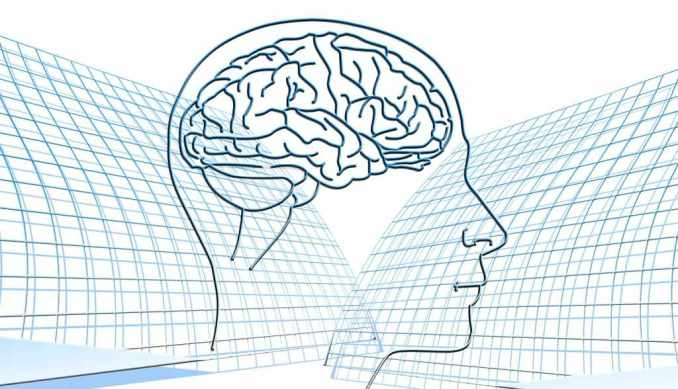 Fenibut y el cerebro Efectos en el cerebro del fenibut