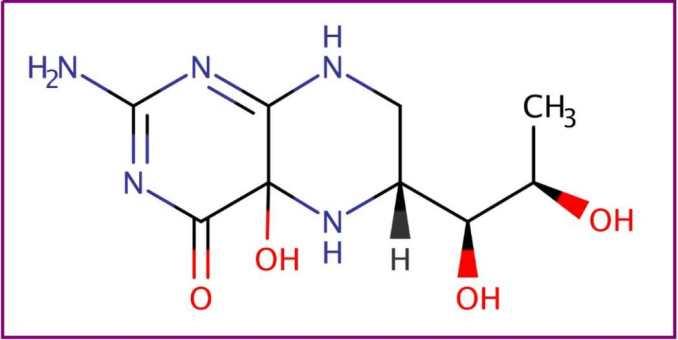 ¿Qué es la tetrahidrobiopterina (BH4)? ¿Para qué sirve la tetrahidrobiopterina (BH4)? Beneficios de lla tetrahidrobiopterina (BH4)