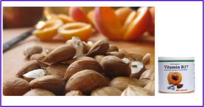Beneficios de la Vitamina B17 ¿Cuál es la Vitamina B17? ¿Para qué sirve la Vitamina B17?