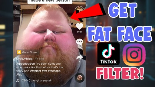 fat chubby face filter tiktok instagram