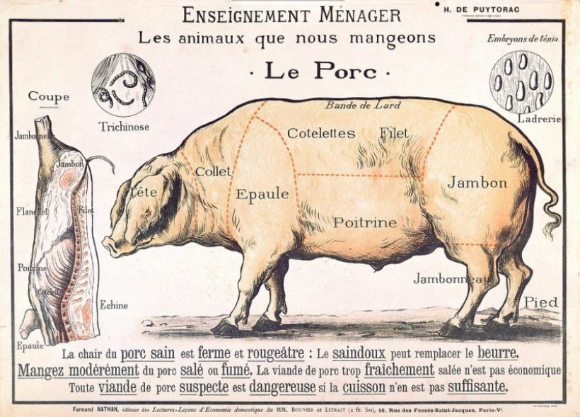 cuts-of-pork-french-school