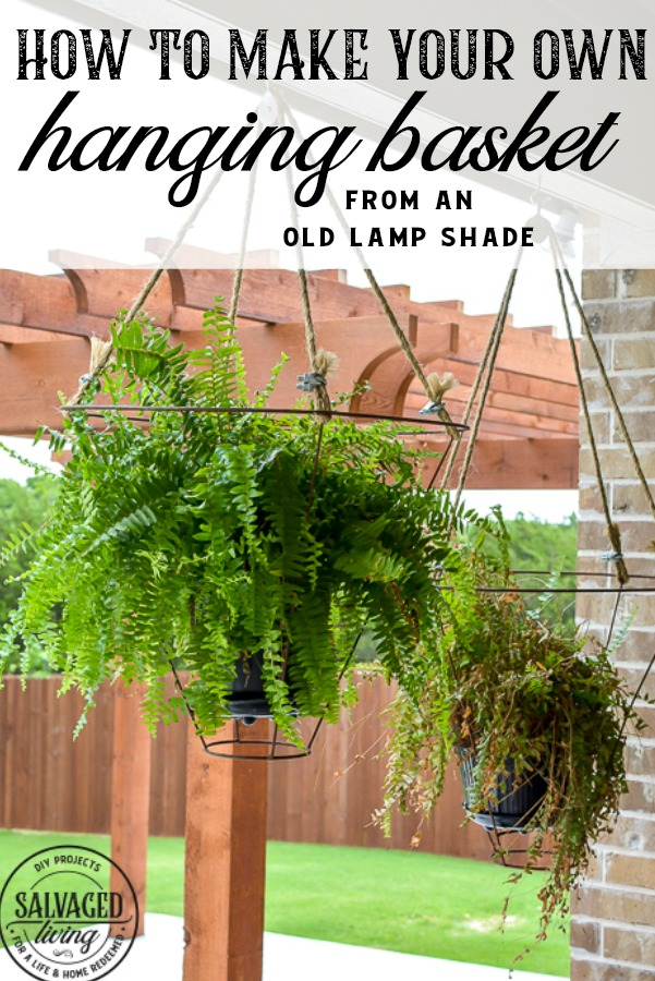 unusual outdoor hanging basket idea