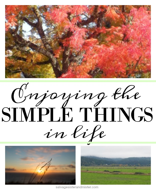 ideas on how to enjoy simple things in life on salvagesisterandmister.com