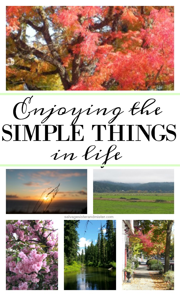 enjoying this simple things in life before soon they are gone.  Take time to do some of these things to help you with simplicity on salvagesisterandmister.com