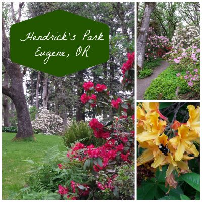 Henrick's park Eugene oregon