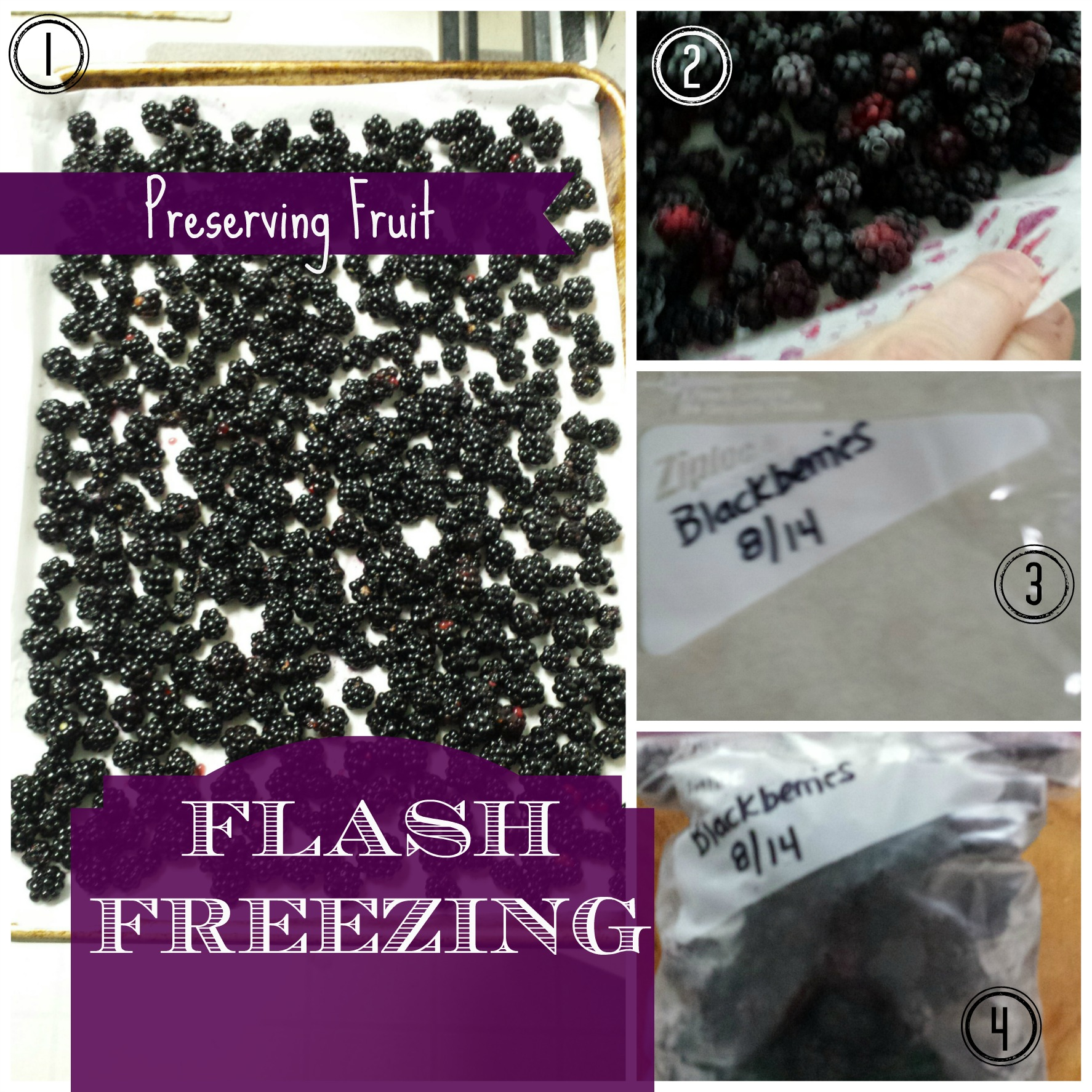 PRESERVING YOUR FRUIT BY FLASH FREEZING