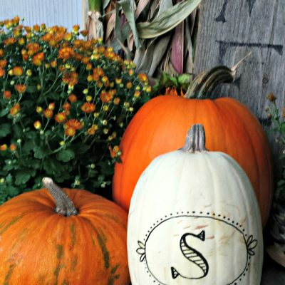 A quick and easy porch decoration - 5 minute monogrammed. On salvagesisterandmister.com