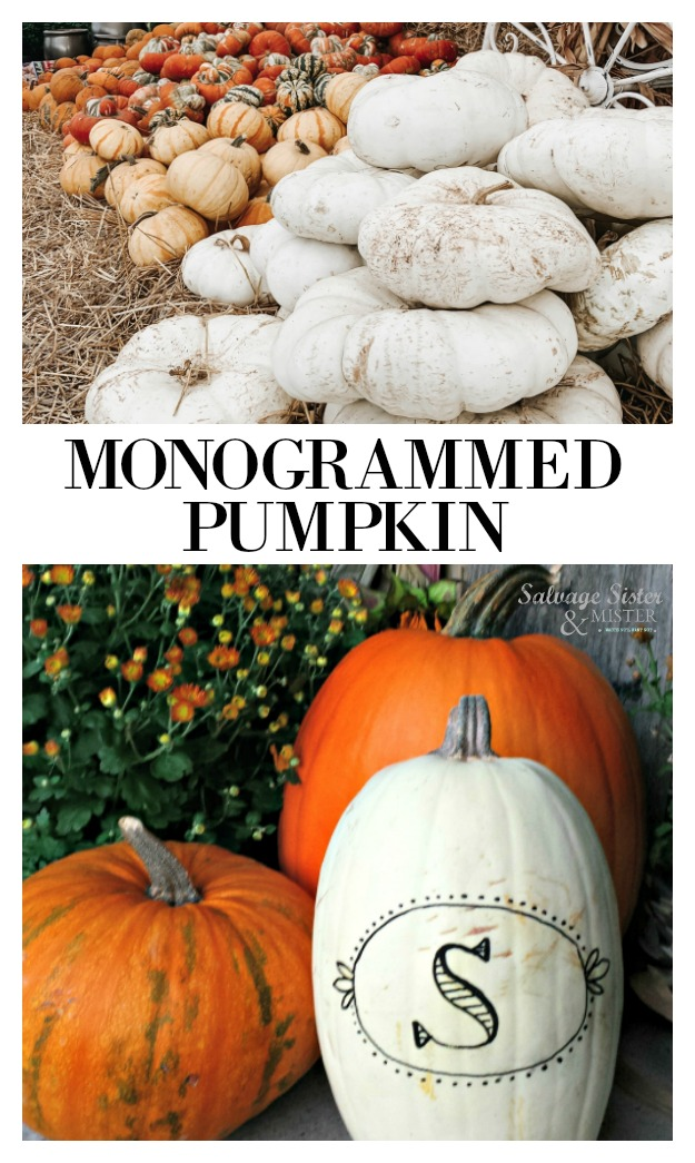 DIY 5 minute monogrammed pumpkin project on salagesisterandmister.com.  Super easy to bring a little extra special to your fall porch decor.  Get the instructions on salvagesisterandmister.com