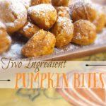 two ingredient pumpkin bites