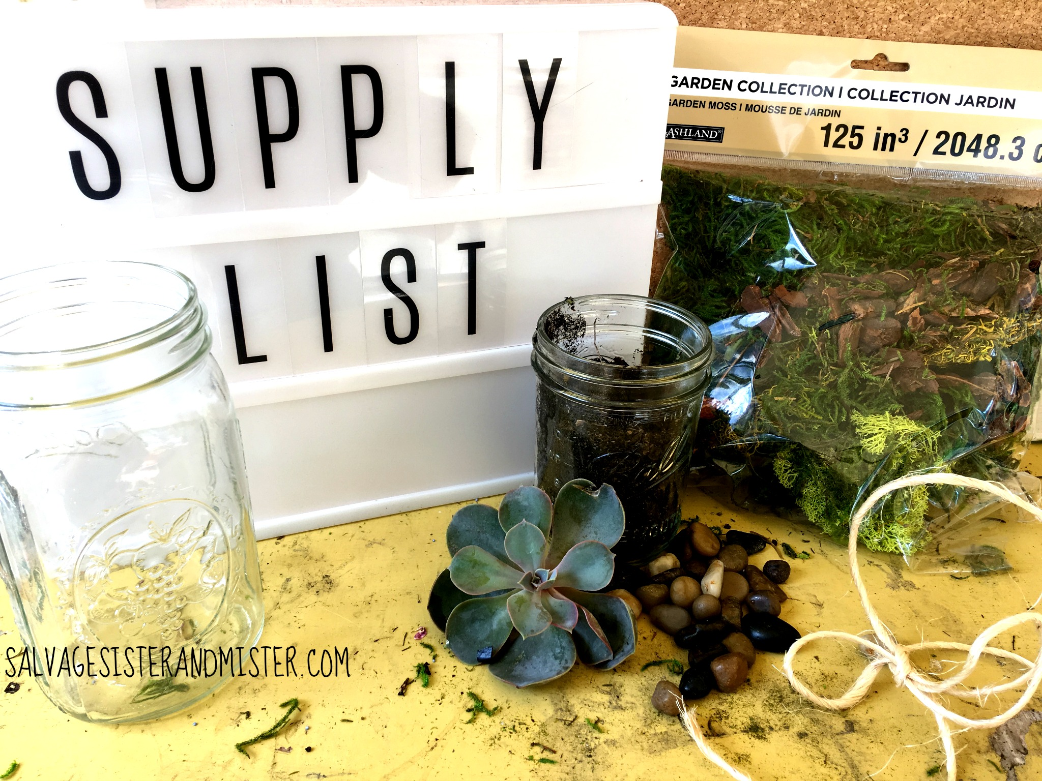 Do you have an extra mason jar lying around? Here is an easy DIY project to upcycle it. This mason jar terrarium is a great home decor item or use it as a gift. They require little care and are cheap to make.