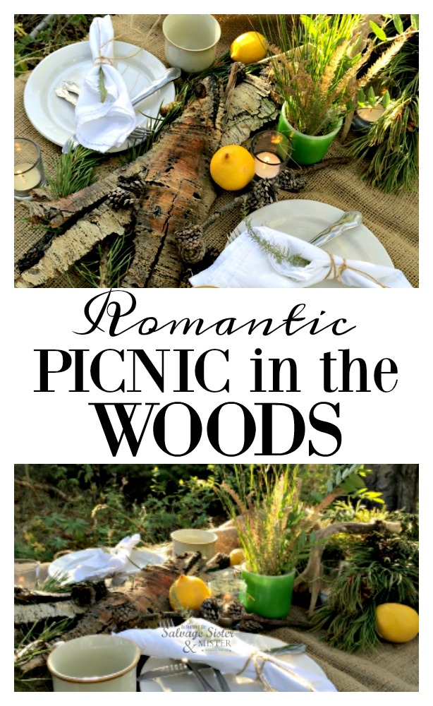 Romantic picnic in the woods using items from nature.  Use what you have to make your event special inexpensive date idea.  Get the deatils on this nature inspired picnic for you and your significant other. As featured on salvagesisterandmister.com