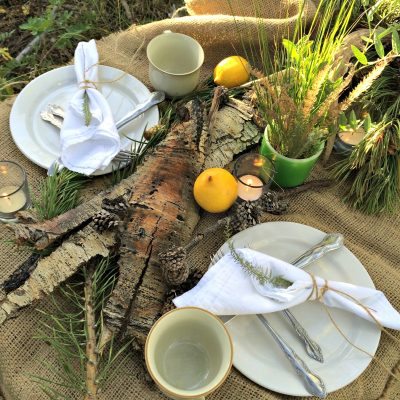 A Woodland Picnic. Using items around the house and nature, this beautiful tablescape proves you don't have to have a lot of money or resources to make a romantic dinner out in the woods.