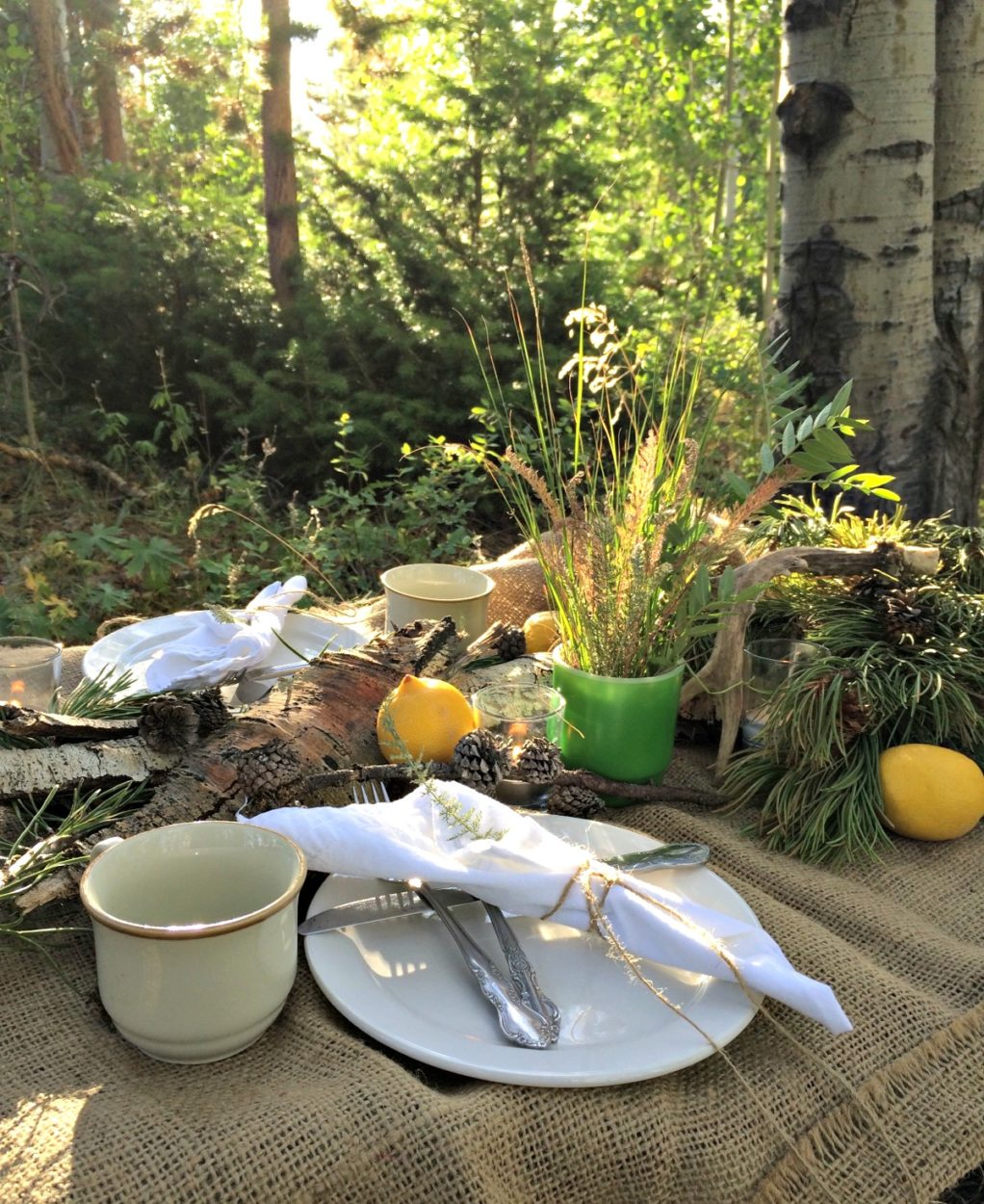 A picnic in the woods is not so hard when you use what you have including using nature as the centerpiece. Bargain decor is right at your finger tips sometimes. This woodland picnic is cozy and romantic.