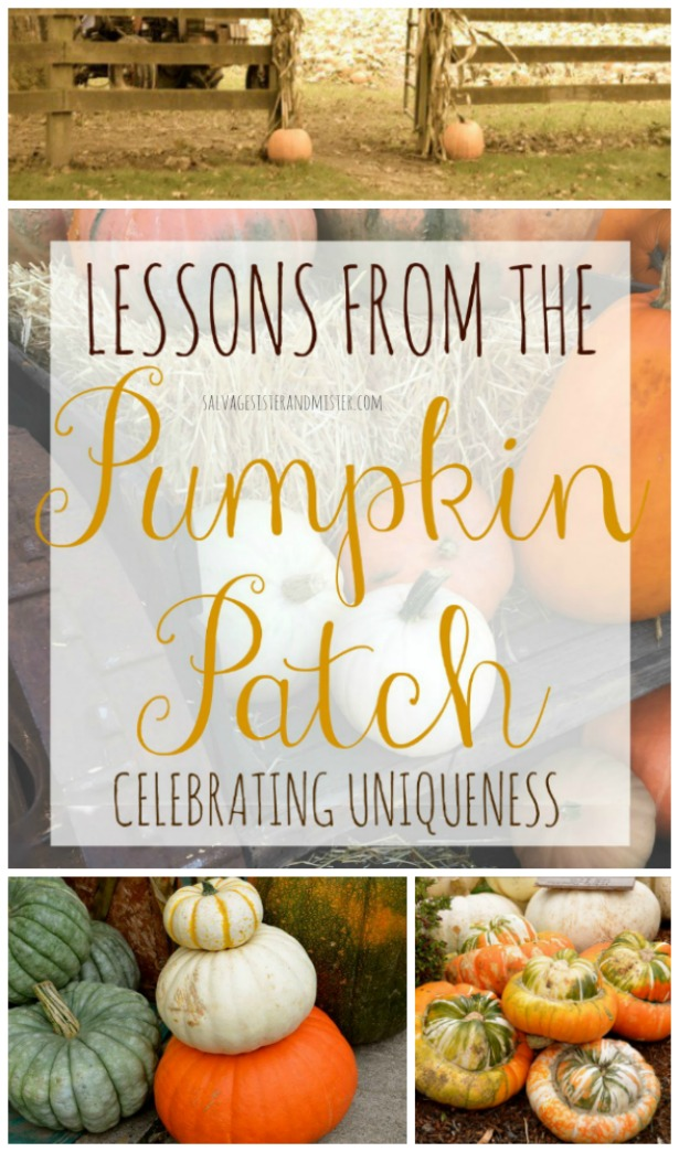 Lessons from the pumpkin patch -celebrating uniqueness in others and you.  salvage moments in your life to make the most of your life at salvagesisterandmister.com Love others, different is okay, love yourself