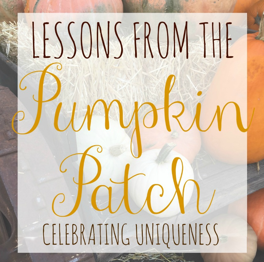 celebrating uniqueness lessons from the pumpkin patch on salvagesisterandmister.com