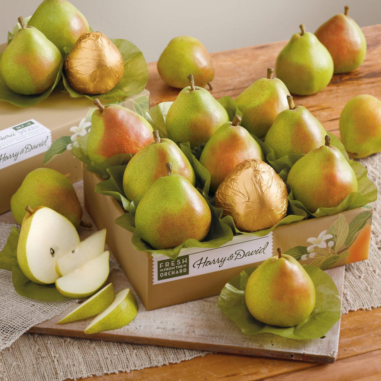 harry-and-david-pears-1