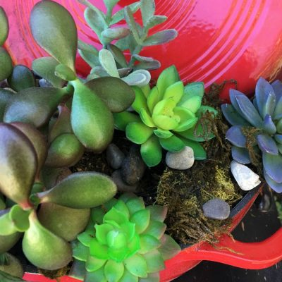 A succulent planter from a dutch oven. Repurpose, reuse, or upcycle items you have in a whole new way. DIY one for your garden. Adds a nice pop of color for your yard and create some curb appeal.