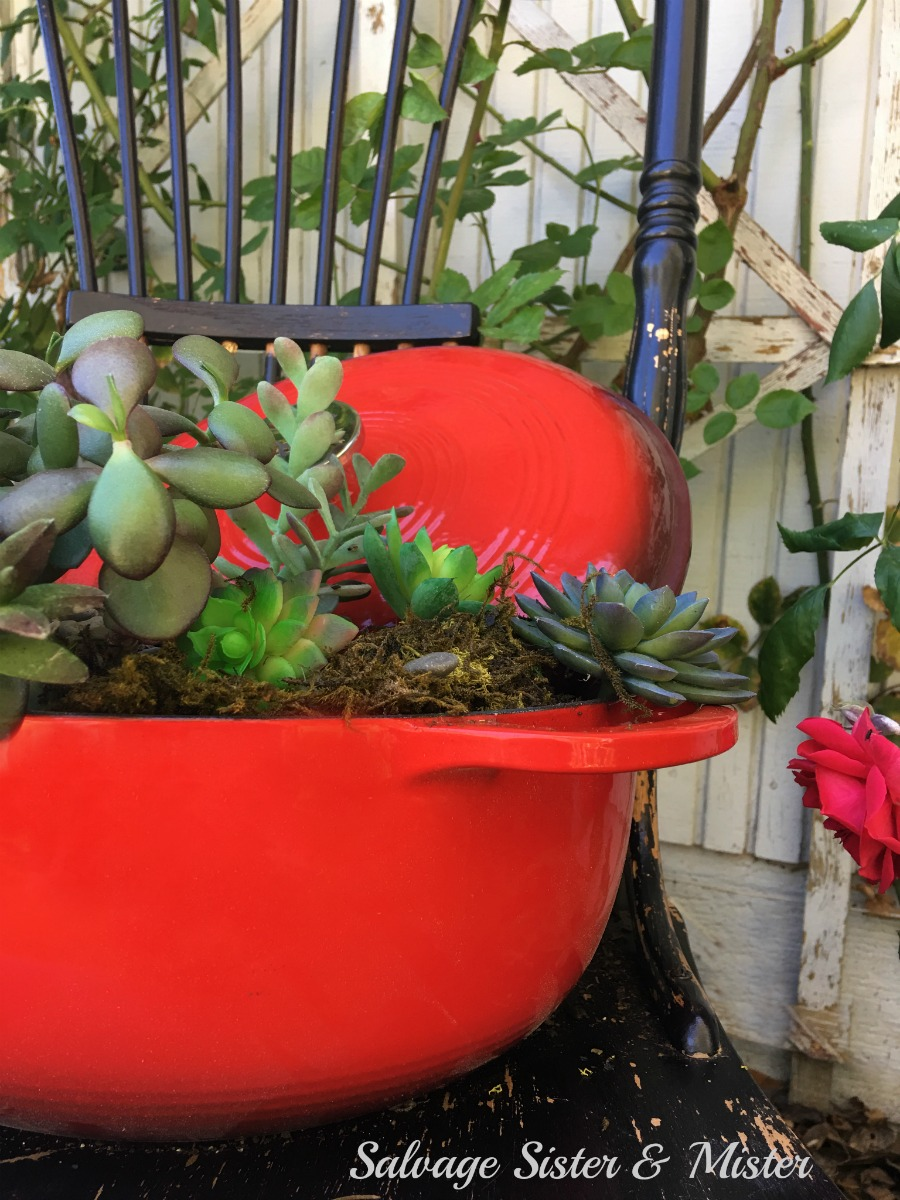 Repurpose just about anyting into a planter. It's a great way to reuse or upcycle your unwanted or unused items into something new. This dutch oven became a planter for the garden. Makes for a great pop of color too.