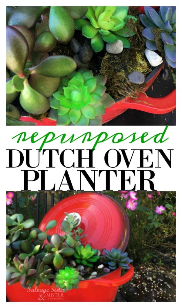 You can upcycle lots of items for your garden.  This repurposed dutch oven planter is a great way to use a thrift store item, something from the free pile, or an item that you lost a lid or found damaged. Plus find some ideas on what to reuse to decorate your garden. Find these waste not, want not ideas on salvagesisterandmister.com