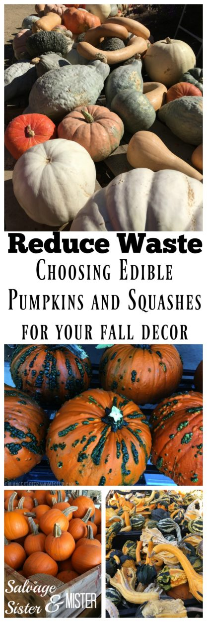Reduce waste - Choosing pumpkins and squashes for your fall decor that are also edible. Use for soups, mashed, roasting, puree, pies, baked goods, etc. Waste not want not. Dual purpose.