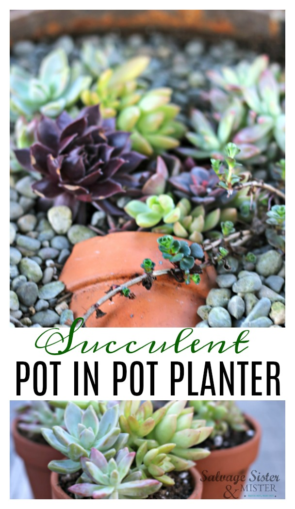 Turning a broken pot and vintage container and turning it into a succulent pot in pot planter on salvagesisterandmister.com #upcycle #reuse #repurposegarden